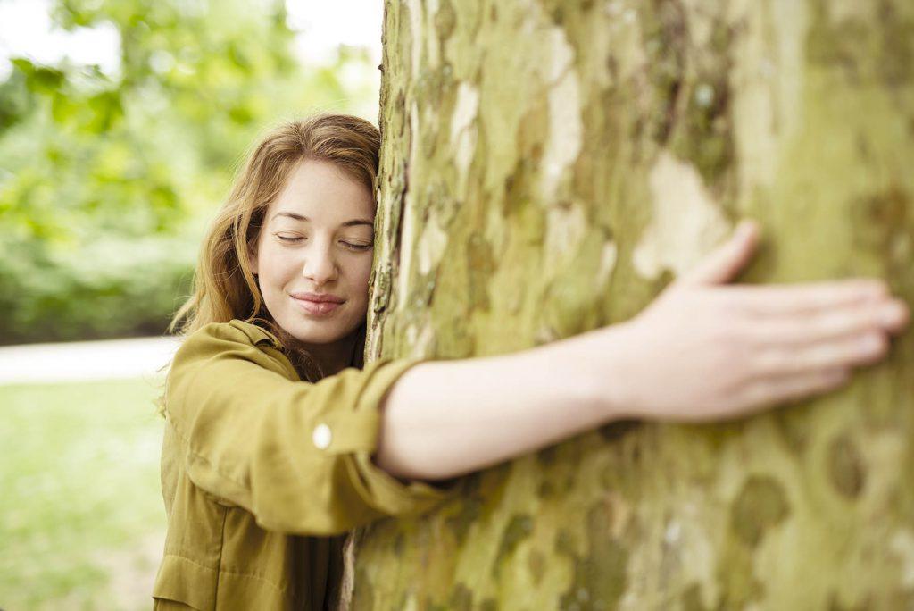 Bien débuter la sylvothérapie avec l'exercice des 6 sens, dr'après le livre Le pouvoir bienfaisant des arbres de Jean-Marie Defossez