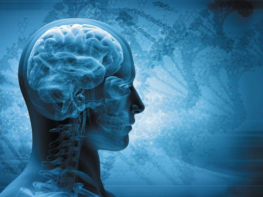 apprenez à conduire votre cerveau